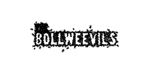 the-bollweevils