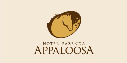 hotel-fazenda-appaloosa