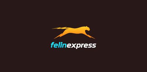 felinexpress