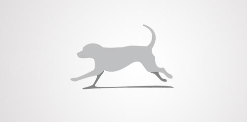 Alpine Dog
