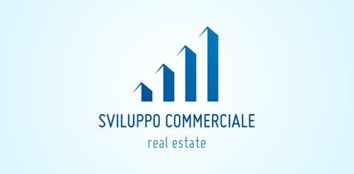 Sviluppo Commerciale