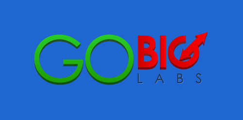 GO BIG LABS