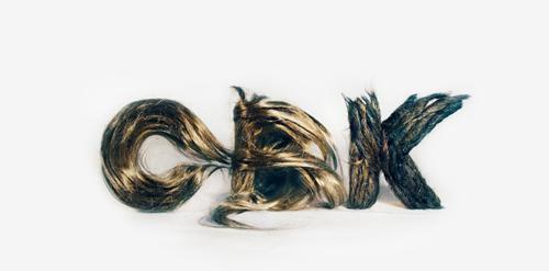 Hair Logo of Chickenbrainken