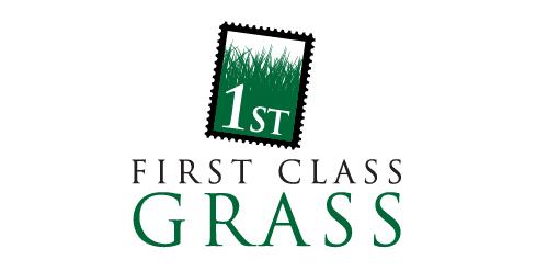 First Class grass