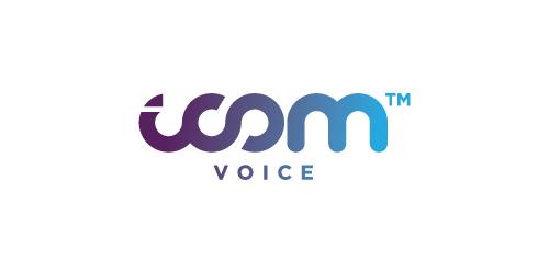 icom voice
