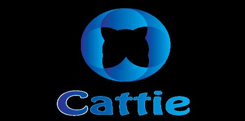 Simple Professional Logo