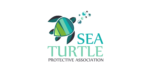 sea turtle logomoose logo inspiration