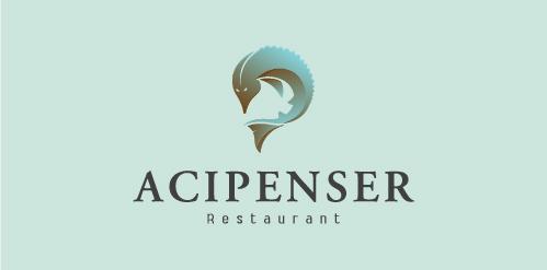 Acipenser