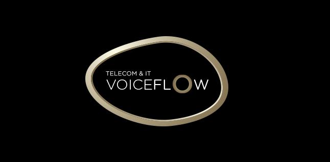Voice Flow