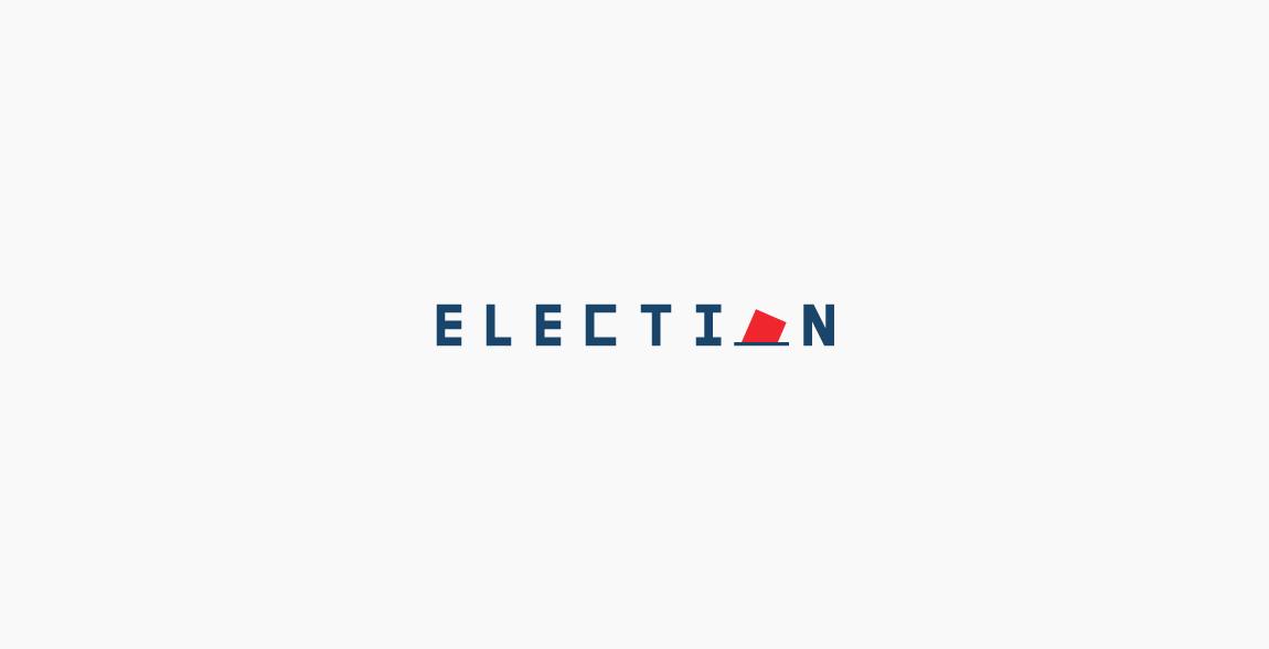 Election Wordmark / Verbicons